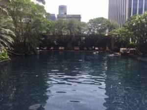 プールも綺麗