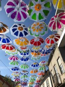 透明な傘の数々