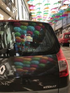 車に映った傘達