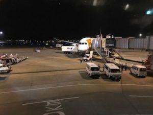 ANAで成田空港到着