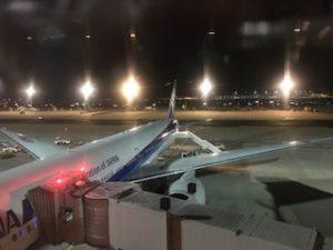 フランクフルトに着いたANAの機体