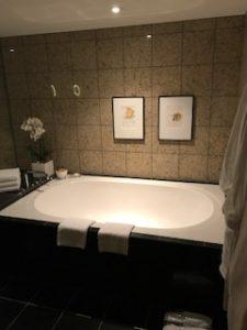 かなり大きい浴槽