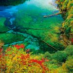 中国の九寨溝へクラブツーリズムで行く海外旅行ツアー