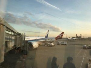 朝の羽田空港に到着