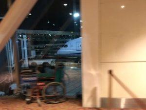 ANAの機体が見えた