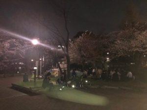 上野公園で夜桜の花見中