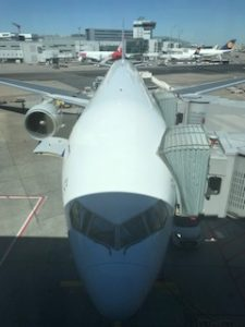 機体の頭写真