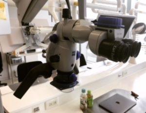 カールツァイスの顕微鏡